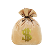 Money Bag Cushion for sofa